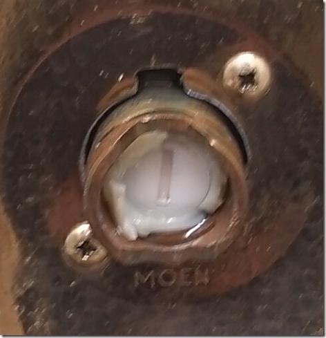 Shower Repair 1