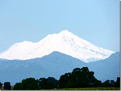 Mt Shasta 100miles 2