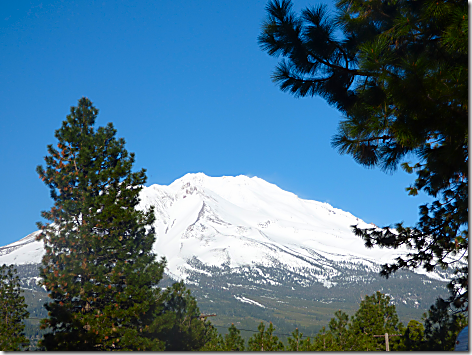 Mt Shasta RV Park