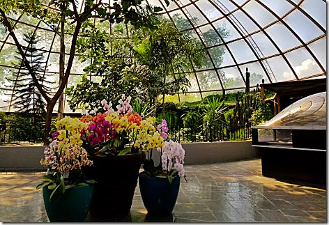 Reptile Gardens Dome 2