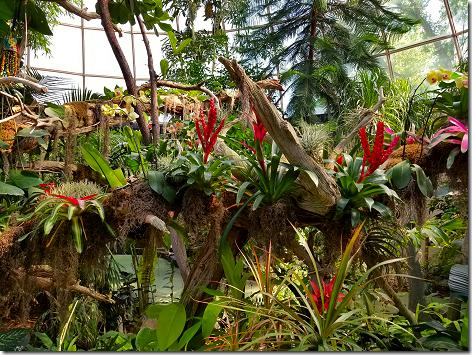 Reptile Gardens Dome 3
