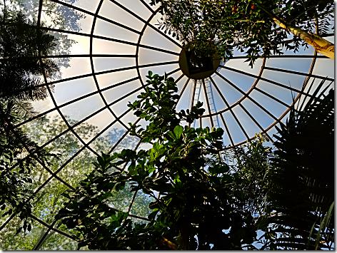 Reptile Gardens Dome 5