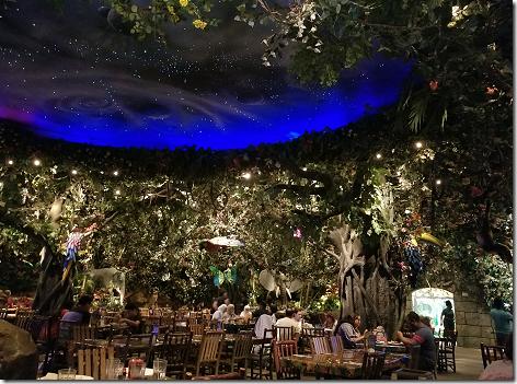 Rainforest Cafe Sky